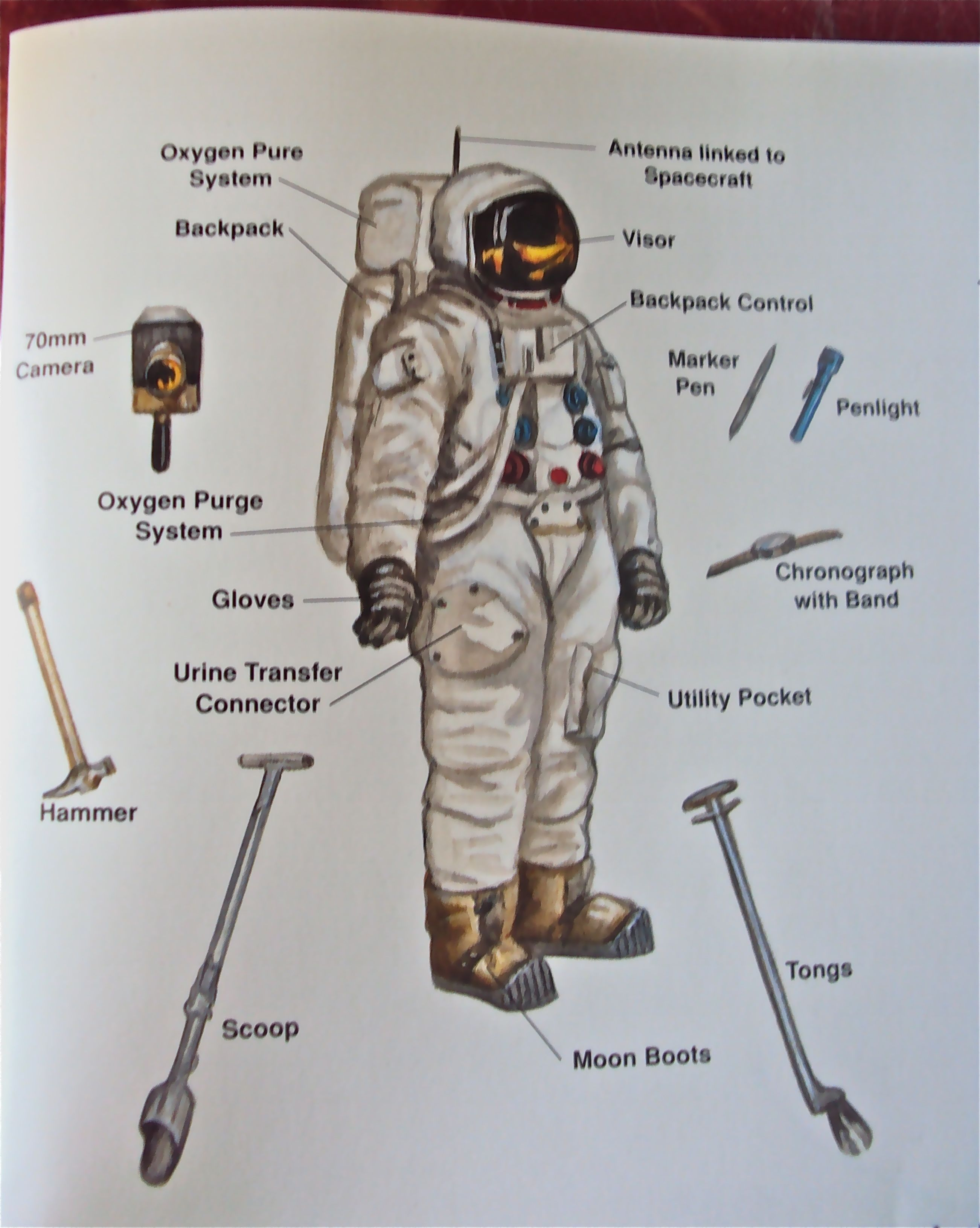 Space Suit Glove Diagram Page 2 Pics About